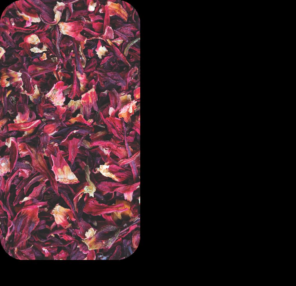 Hibiscus_slider